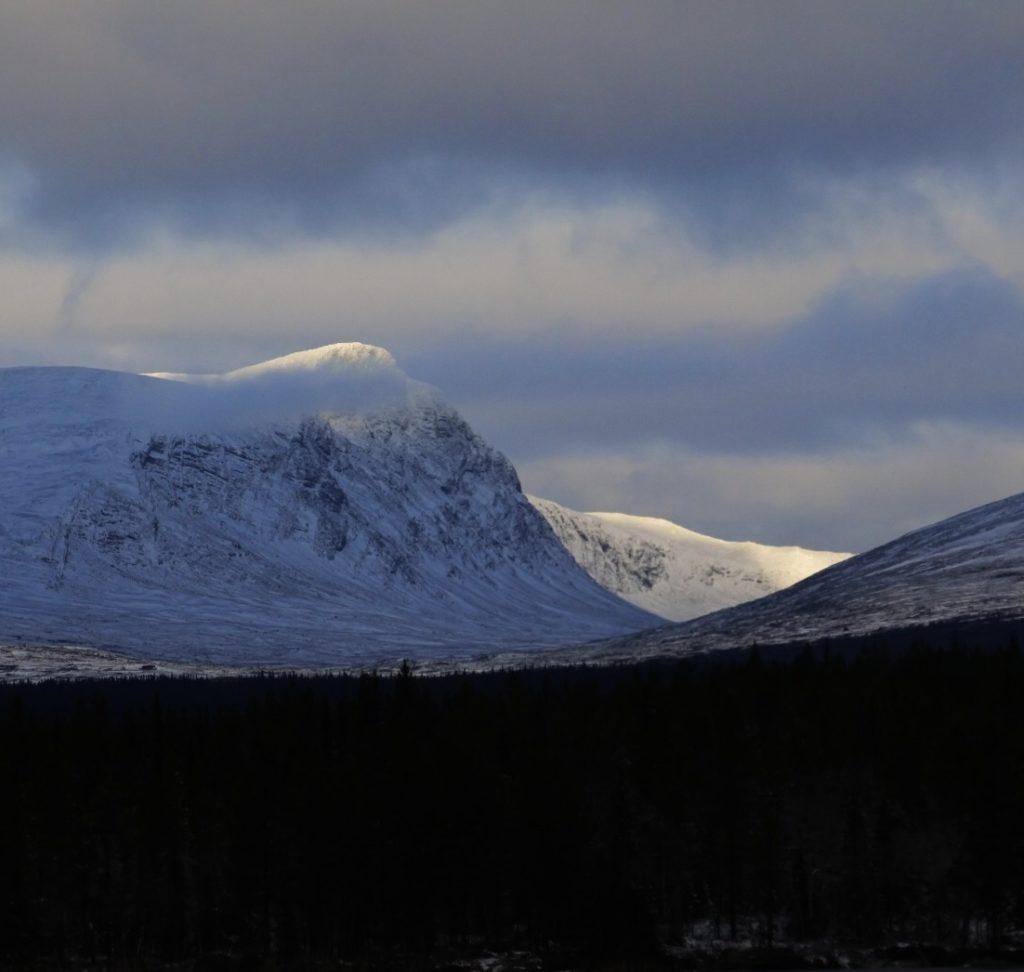 Zweedse bergtop met sneeuw